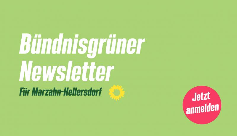 Bündnisgrüner Newsletter